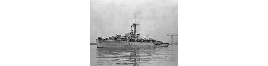 HMS Starling / Black Swan Class